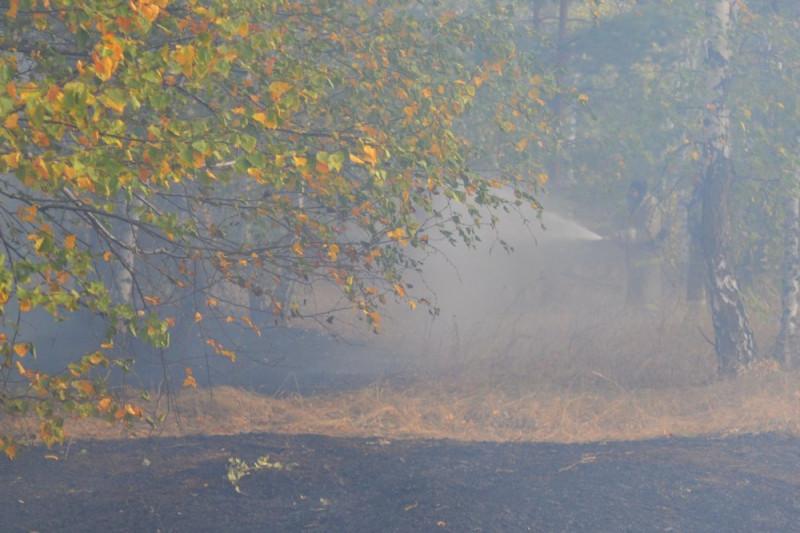 Лндшафтные пожары Воронежской области